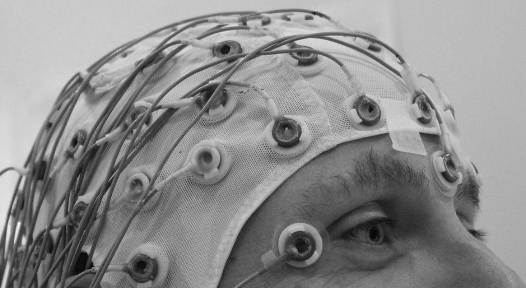 El cerebro, una mina de datos